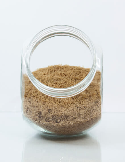 Fideos de trigo integral finos